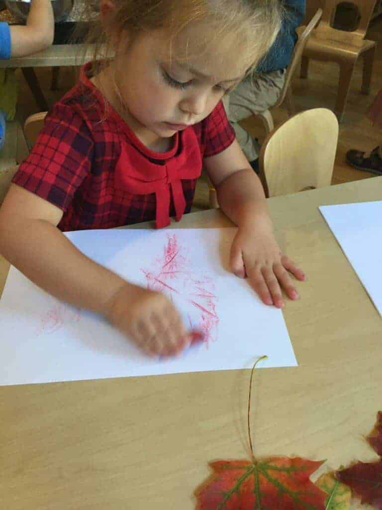 Darling Buds Nursery Children's Learning and Development